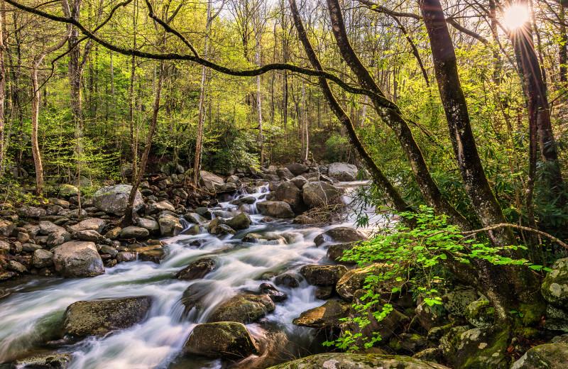 Creek near Oak Square Condos.