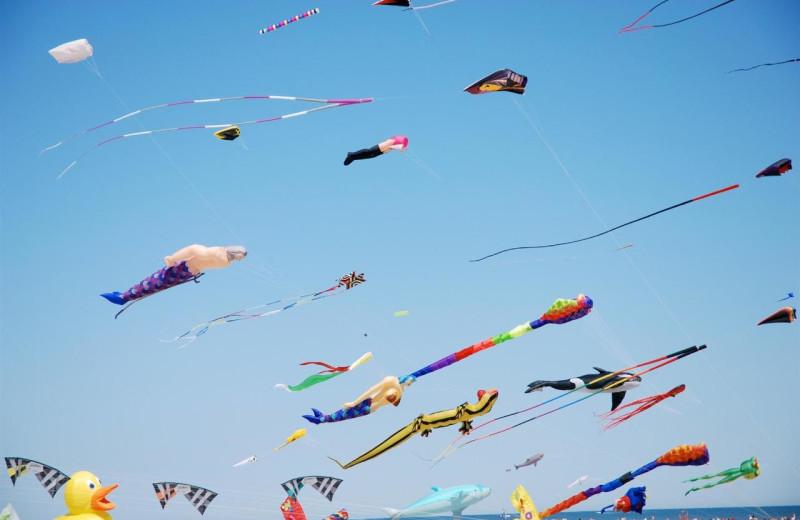 Kites at Shalimar Resort and Conference Center.