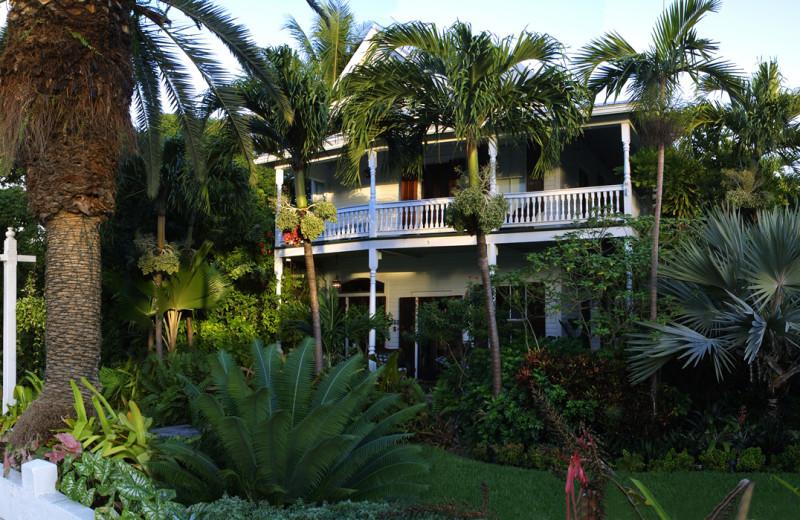 Exterior view of Mermaid & Alligator Key West.