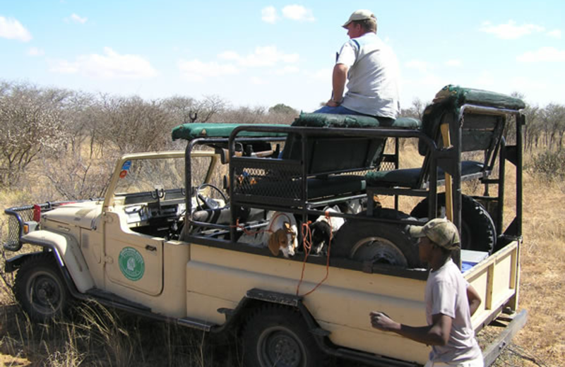 Hunting safari at Sandhurst Safaris.