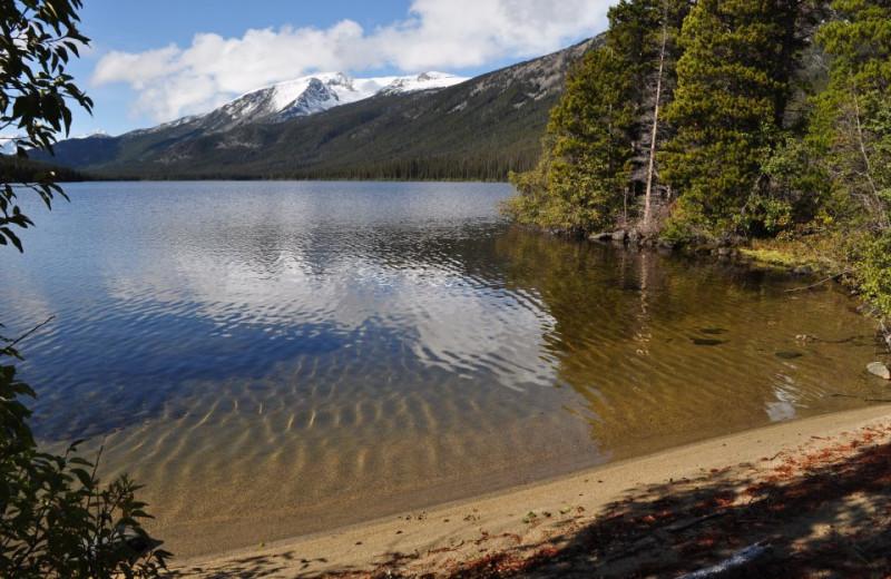 Lake Shore at Crazy Bear Wilderness Lodge