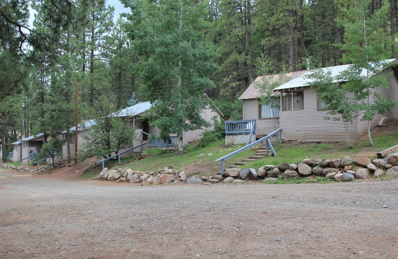 Cabins at Pine River Lodge.