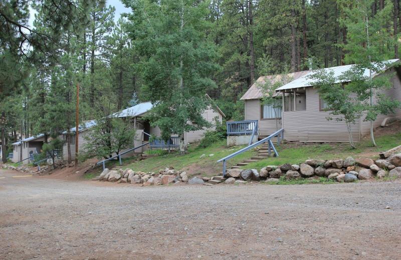 Cabins at Pine River Lodge.