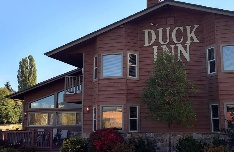 Exterior view of The Duck Inn.