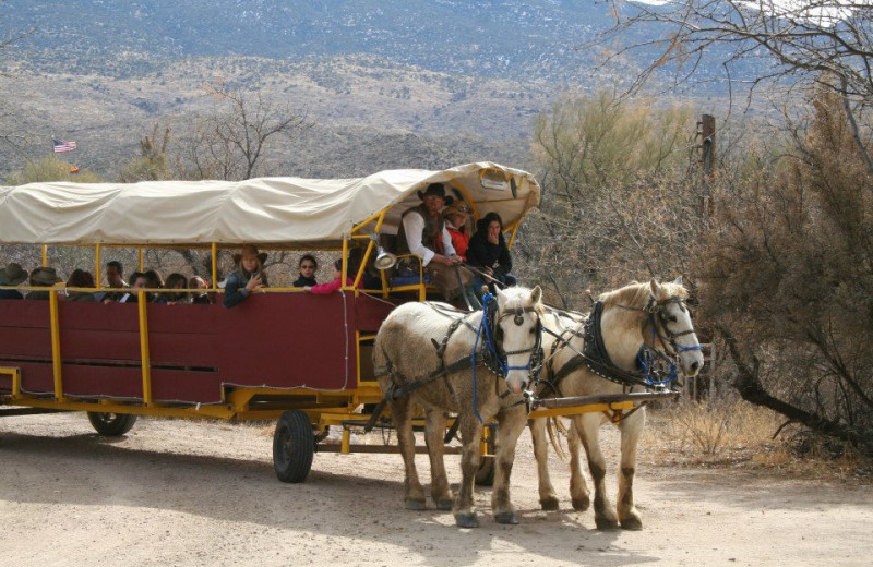 Wagon ride at Tanque Verde Ranch.