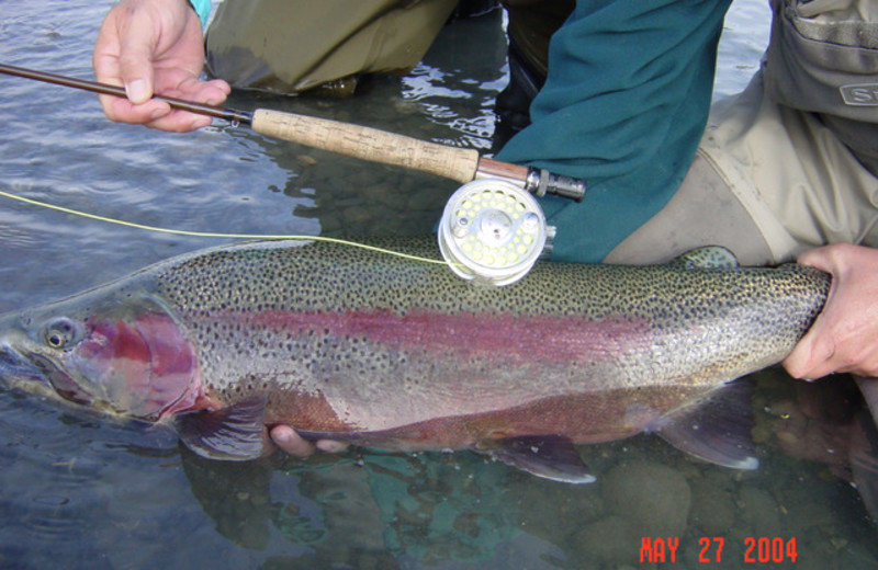 Trout fishing at Great Alaska Adventure Lodge.