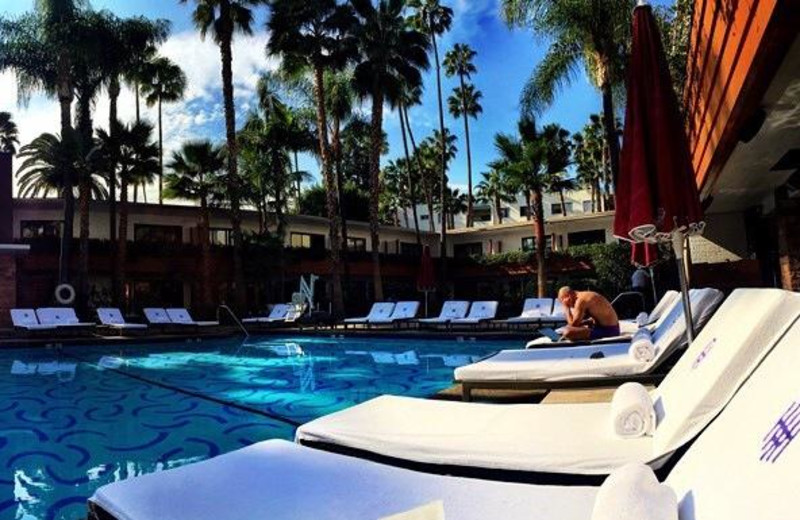 Outdoor pool at Hollywood Roosevelt Hotel.