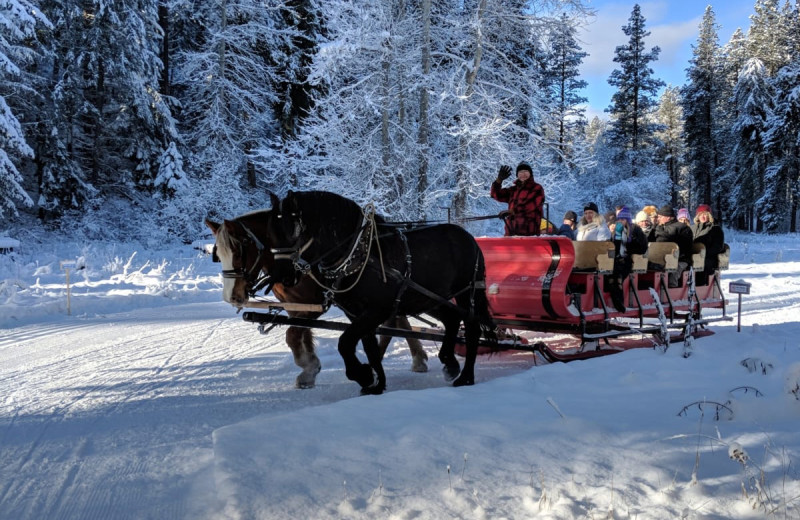 Sleigh ride at Natapoc Lodging.