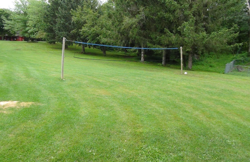 Volleyball net at Birchcliff Resort.
