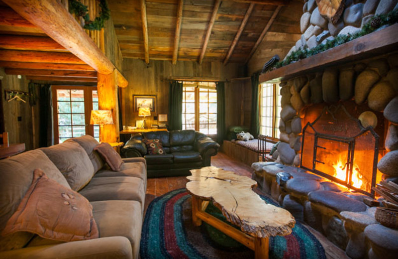 Cabin living room at Wellspring.