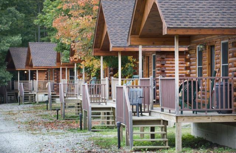 Cabins at West Branch Angler & Resort