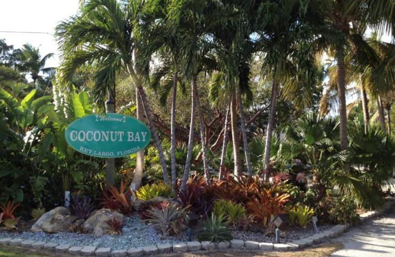 Coconut Bay Resort Key Largo (Key Largo, FL) - Resort