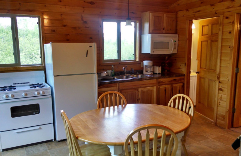 Cabin kitchen at Bliss Point Resort.
