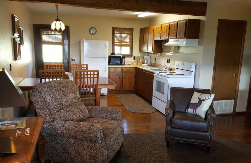 Cabin living room at Arkansas White River Cabins.