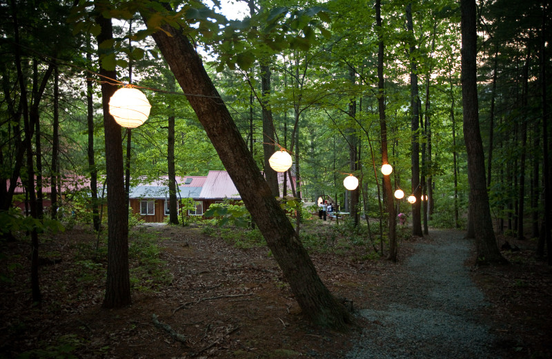 Cottages at Montfair Resort Farm