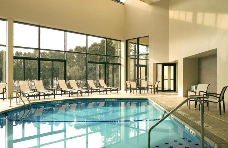 Indoor Swimming Pool at Sheraton Edison Hotel Raritan Center