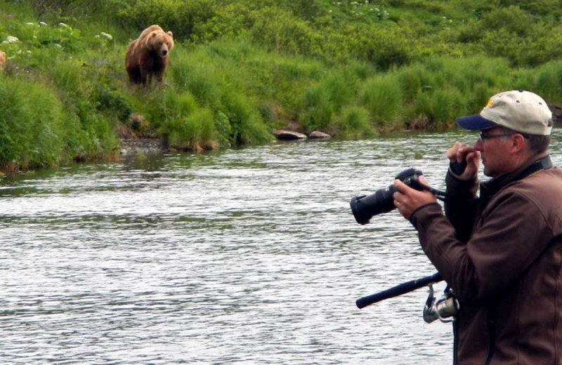 Bear viewing at Zachar Bay Lodge.