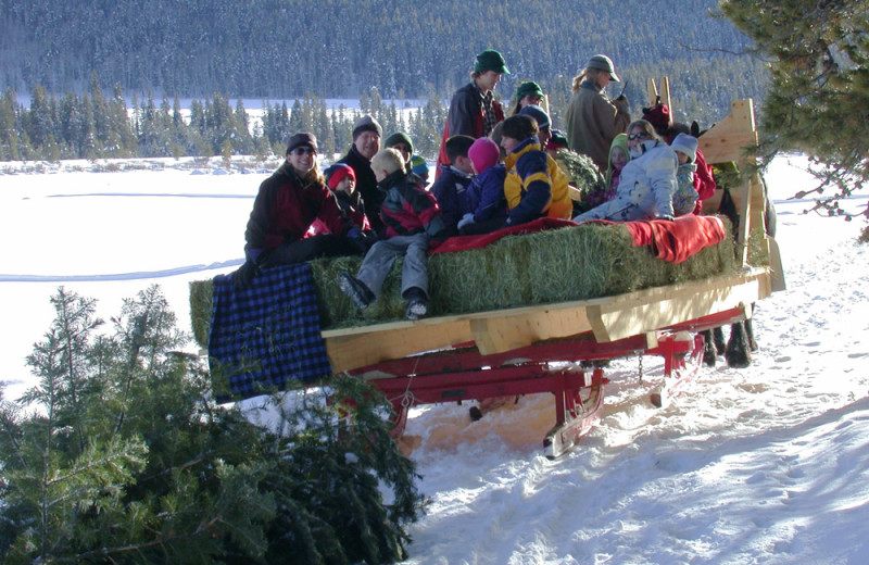 Sleigh ride at Vista Verde Ranch.