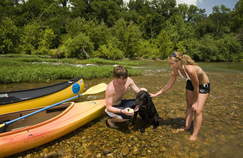 Pets welcome at Buffalo River Outfitters.