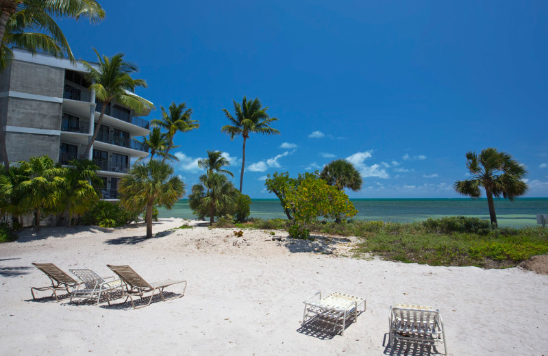 Beach at 1800 Atlantic, All Florida Keys Property Management.