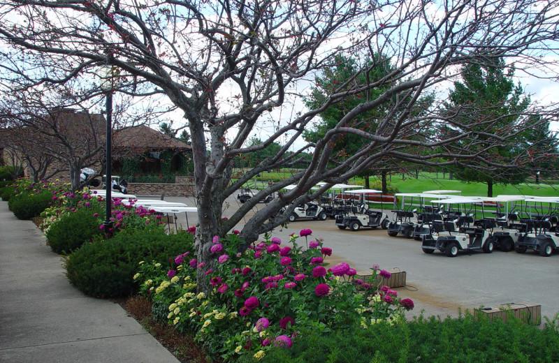 Golf carts at Lakewood Shores Resort.