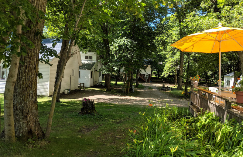 Cabins at Woodlawn Resort.