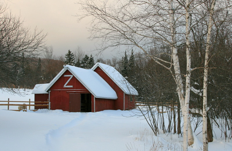 Winter time at Mountain Meadows Lodge.
