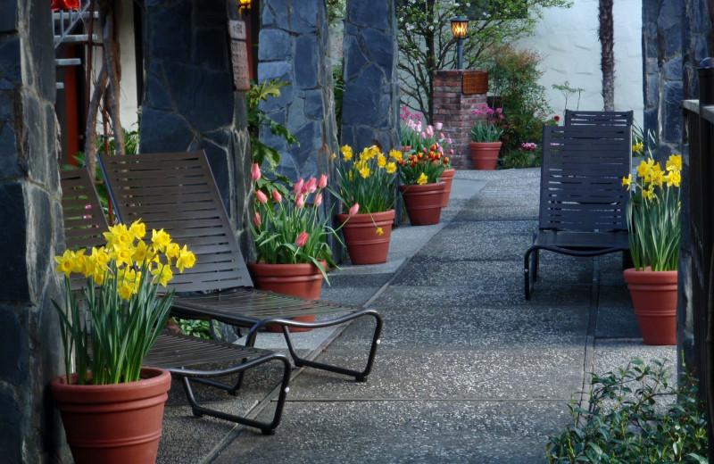 Porch view at Roman Spa Hot Springs Resort.