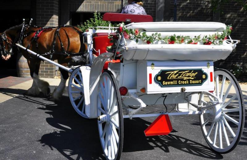 Carriage ride at Sawmill Creek Resort.