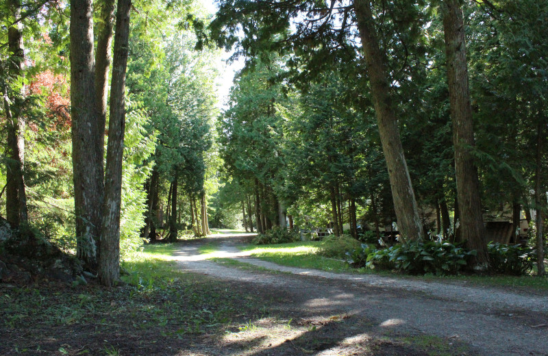 Trail at Black Rock Resort.