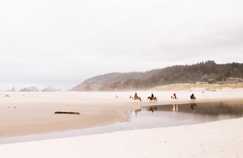 Horseback beach ride at Adobe Resort.