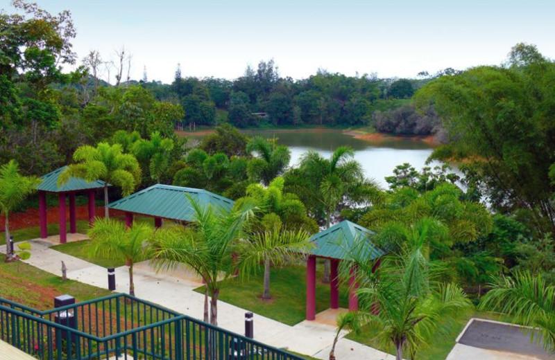 Lake at Cidra Country Club.
