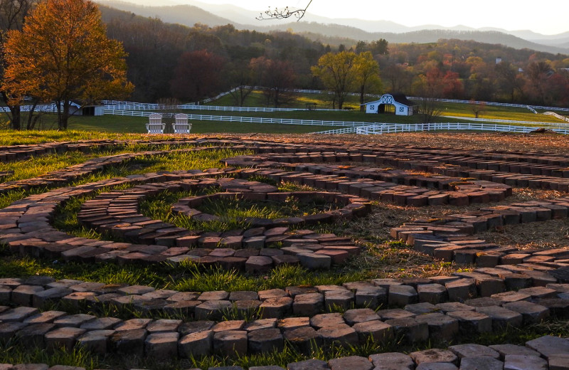 The Labyrinth at The Horse Shoe Farm.