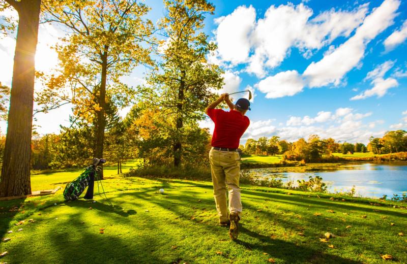 Golf course at Ruttger's Bay Lake Lodge.