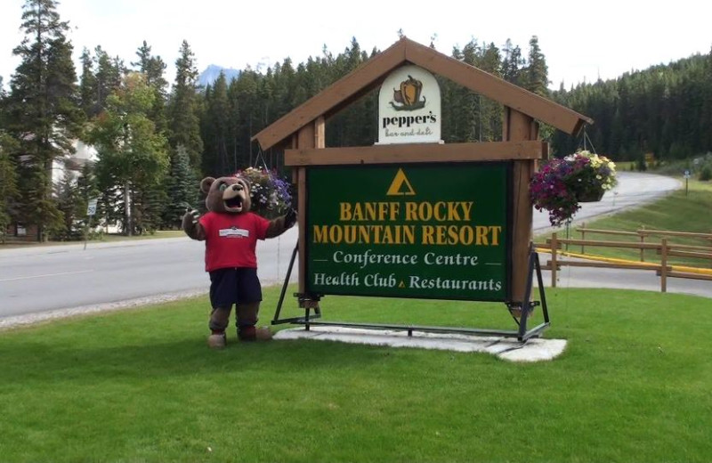 Welcome to Banff Rocky Mountain Resort.