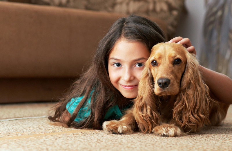 Pets are welcome at Obertal Inn.