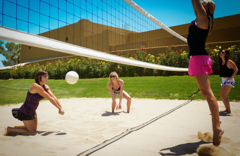 Volley ball court at The Wigwam Resort.