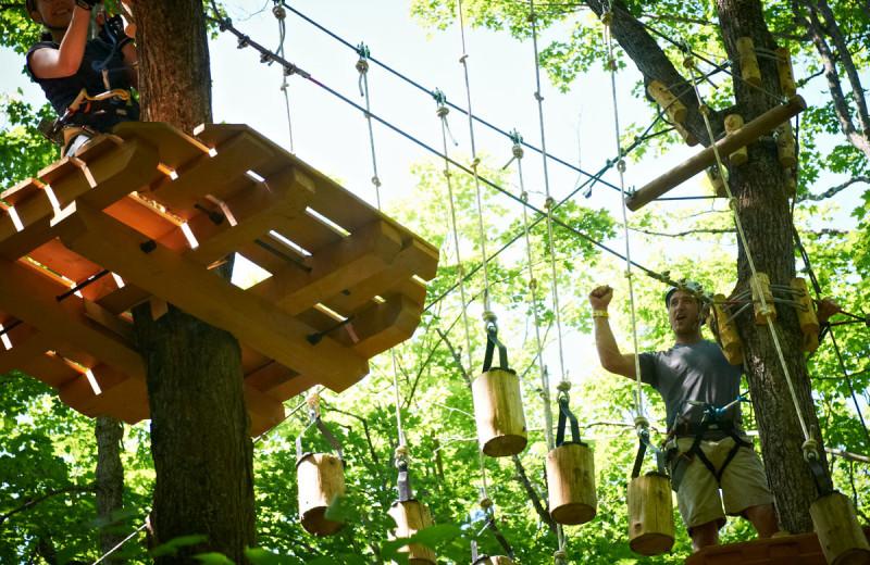 Adventure ropes at Deerstalker Resort.