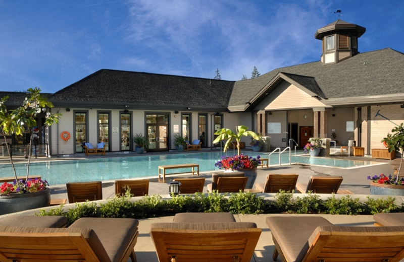 Outdoor pool at The Westin Bear Mountain Golf Resort.