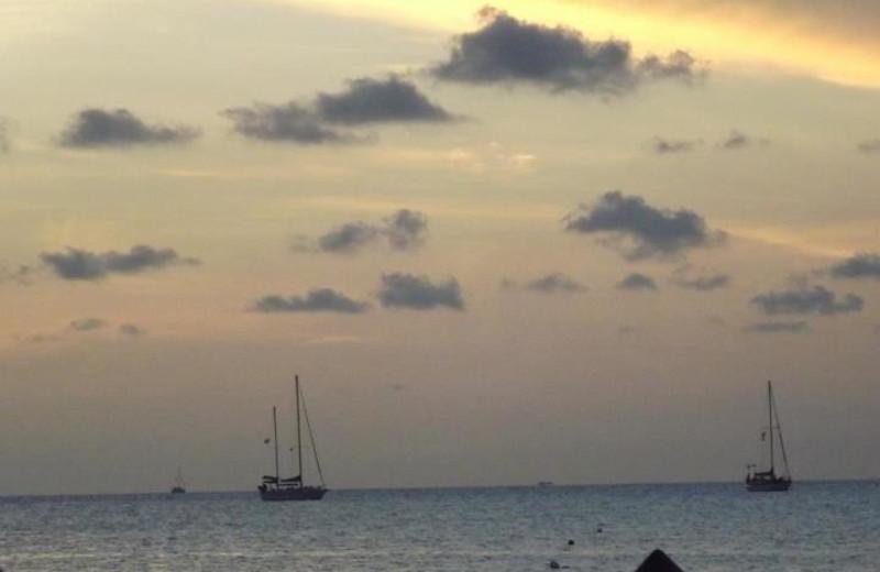 Sail boats view at Coral Bay Resort.