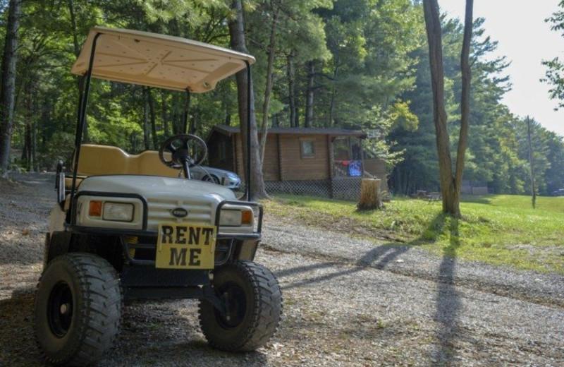 Cabins at Lake Ridge Resort.
