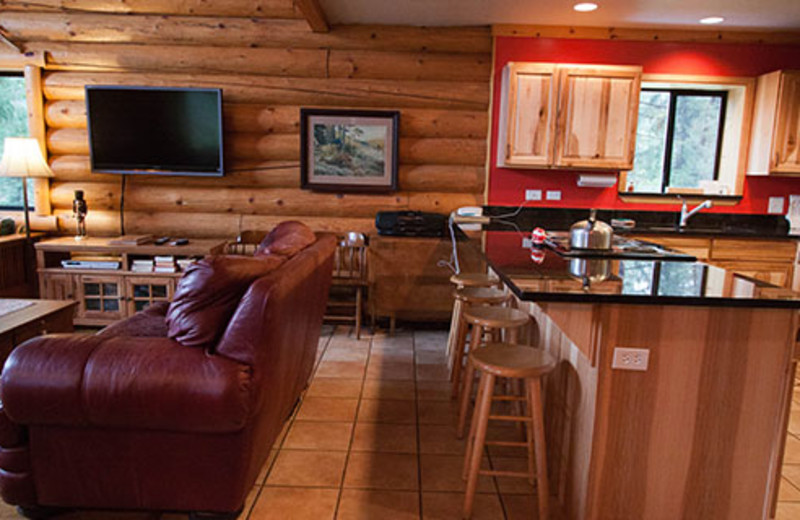 Cabin living area at Natapoc Lodging.