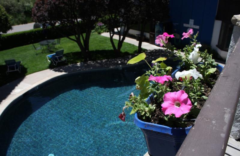 Pool at St. Moritz Lodge & Condominiums.
