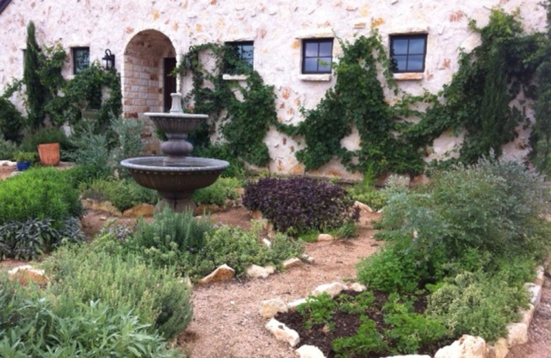 Herb garden at The Vineyard at Florence.