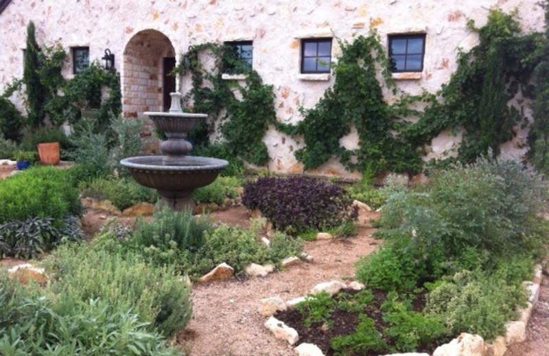 Herb garden at The Vineyard at Florence.