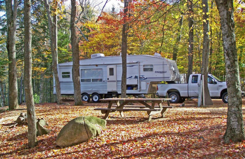 RV sites at Old Forge Camping Resort.
