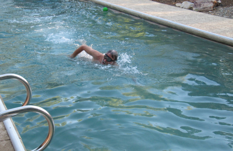 Swimming in the pool at Sarabande Bed & Breakfast.