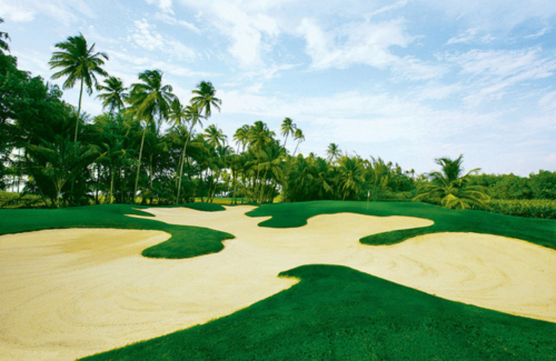Golf course at The St. Regis Bahia Beach Resort, Puerto Rico.