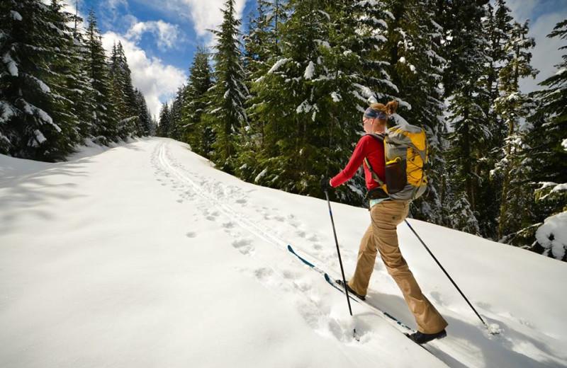 Skiing near Grizzly Jacks Grand Bear Resort.
