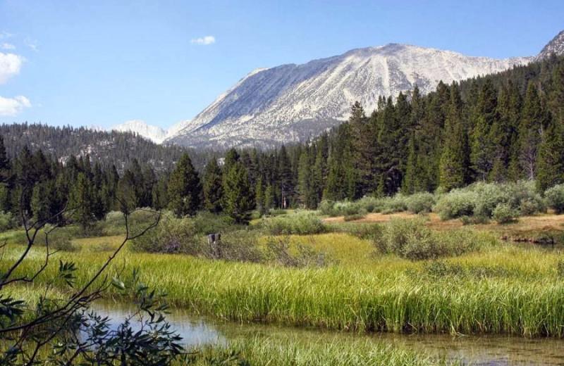 Mountain view at Rock Creek Lodge.